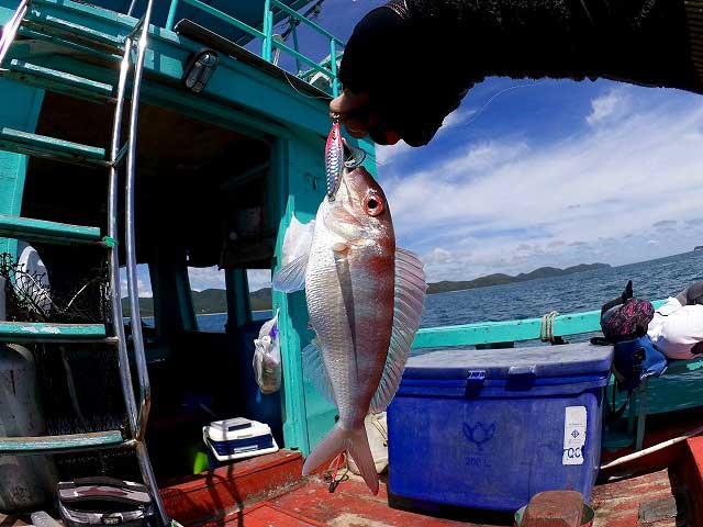 バンサレー 船釣り 釣り イトヨリダイ