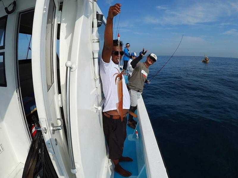 イカ釣り タイランド湾