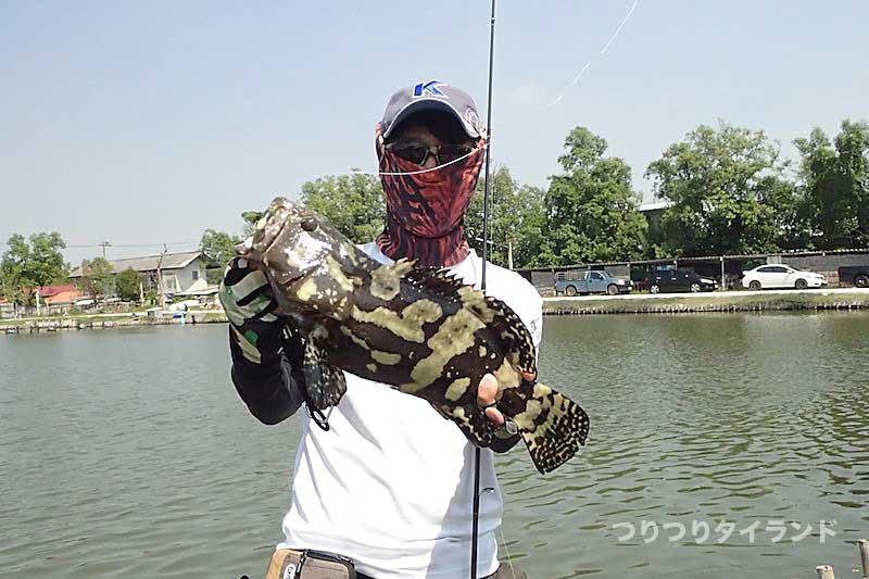 VIP fishing ハタ釣り