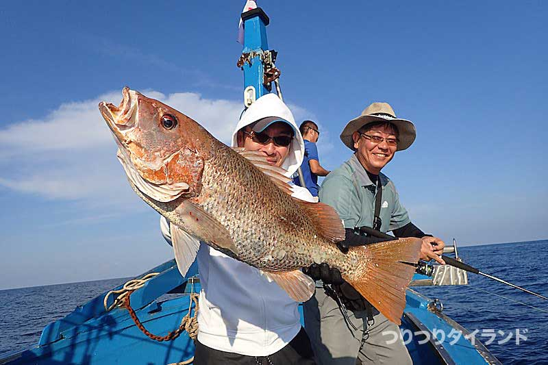 シミラン 釣り フエダイ