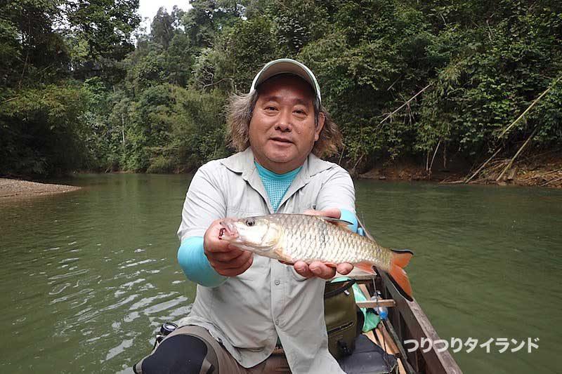 カスープ 釣り タイ スラータニ