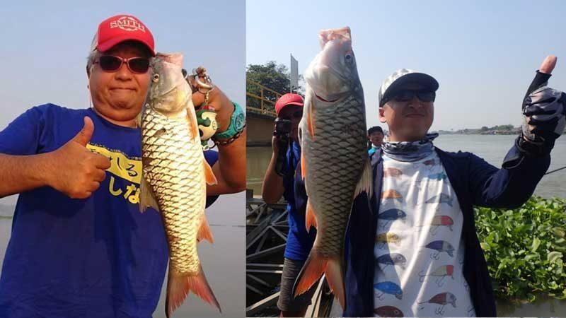 チャオプラヤ川 釣り