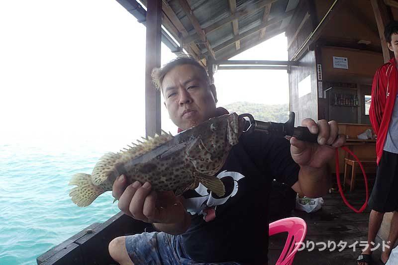 チャイロマルハタ 陣田筏 シーチャン島