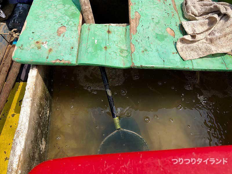 バンパコン川 釣り エビ