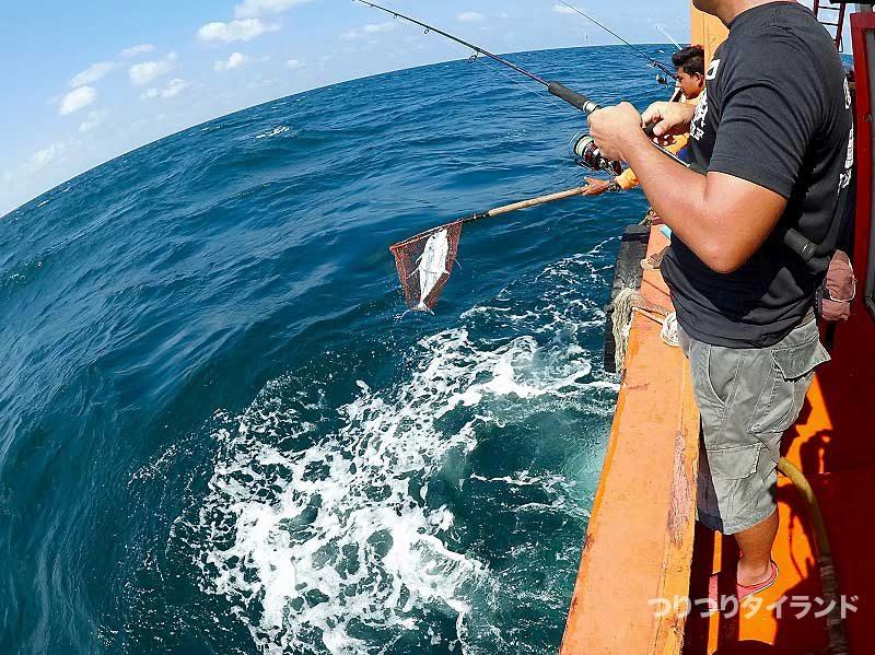 魚をランディング