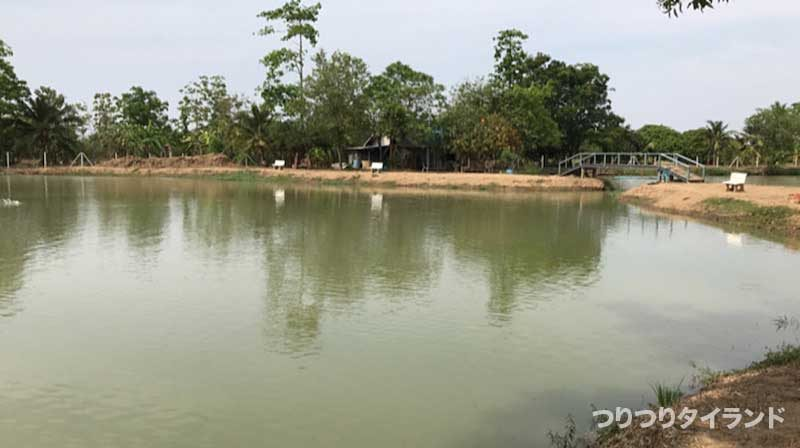AmazonBKKの風景