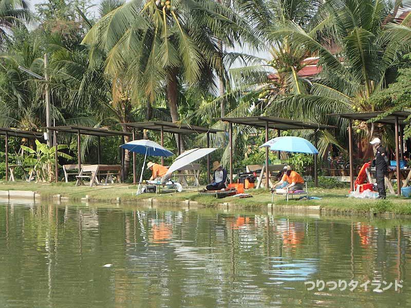 タイ 釣り堀 パラソル
