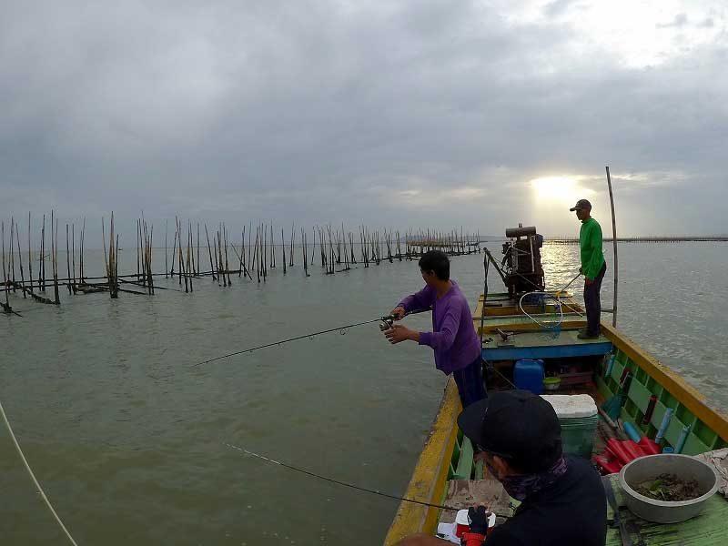バンサイ沖でヒット