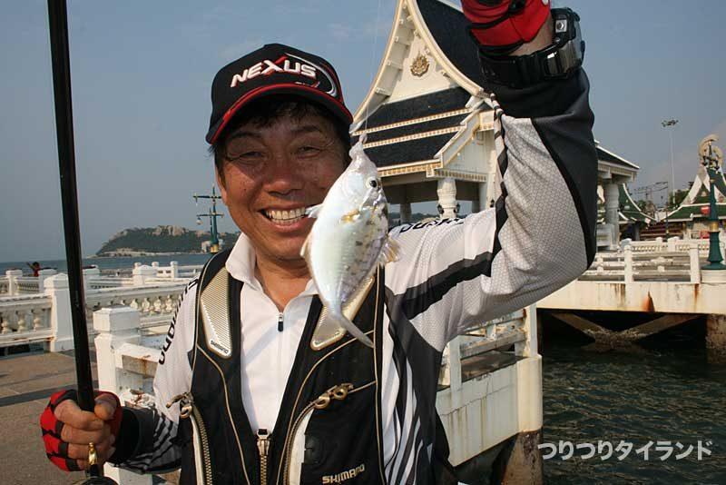 タイでフカセ釣りでヒイラギを釣った大知昭
