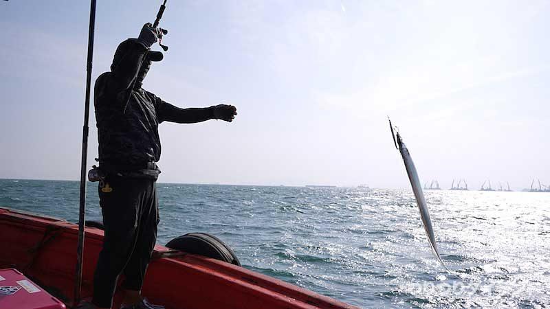 タイでタチウオを釣るツクちゃん