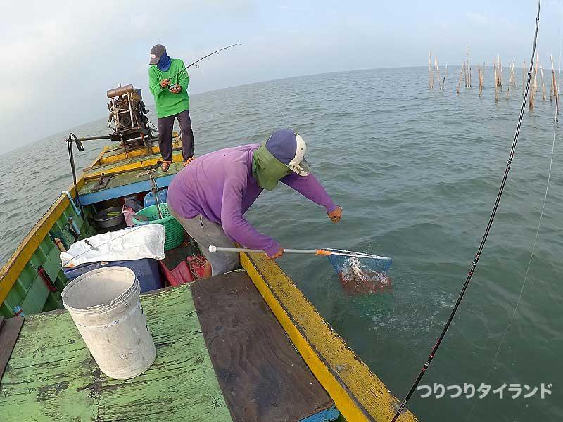 サームルワイ船長がチヌを釣る