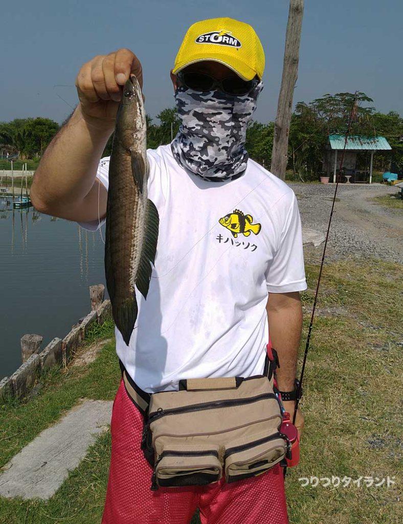 ボーヌムで釣ったプラーチョン