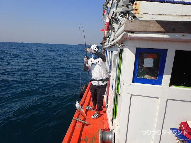シーチャン島で釣れたタチウオ
