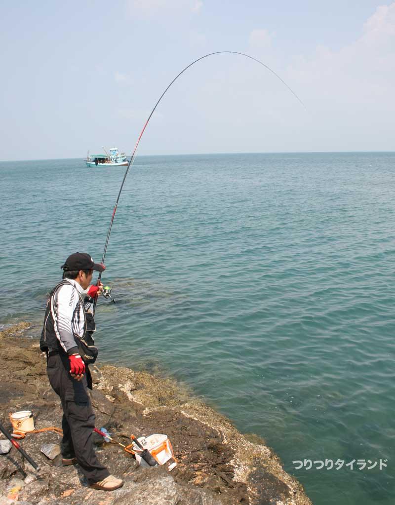 魚とのやり取り