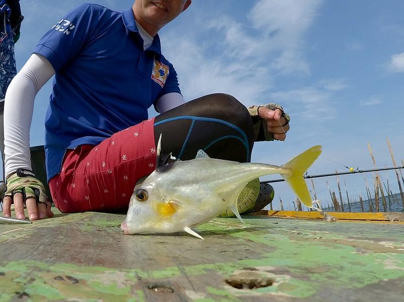 タイで釣れたギマ