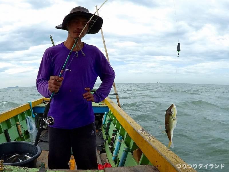 タイランド フグ 釣る
