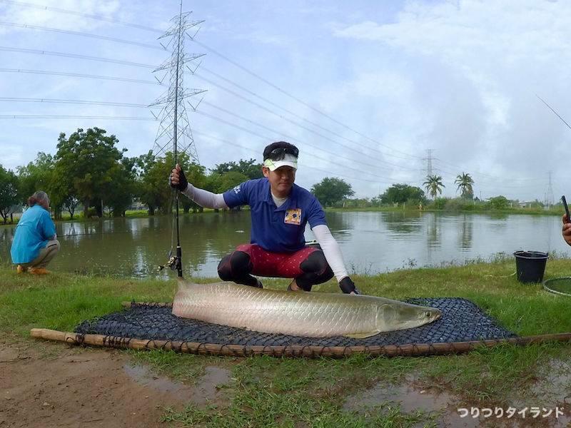 タイ 釣り堀 ピラルク 釣り