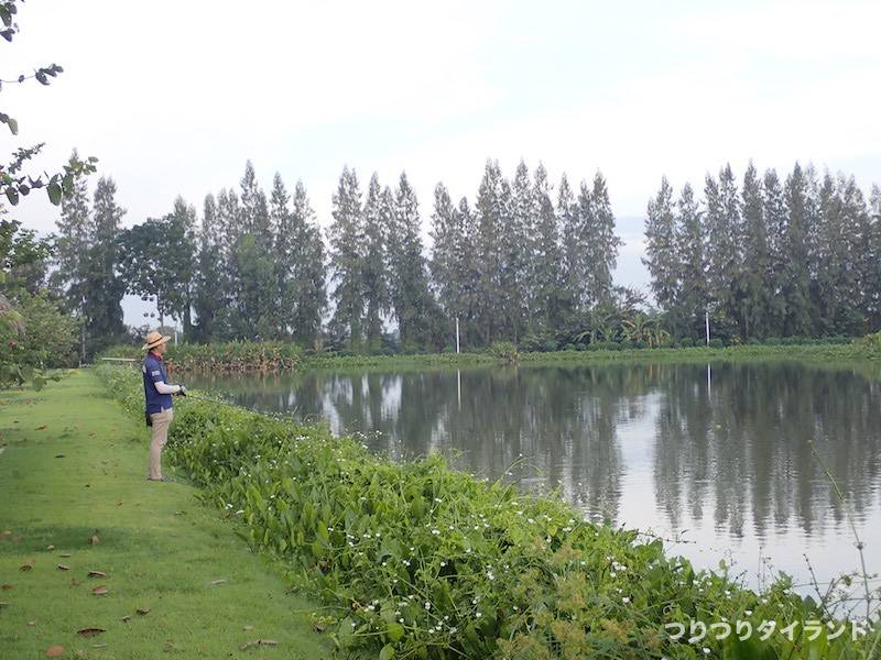Thai NaNa Fishingで釣るツボっちゃん