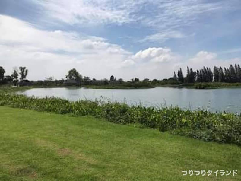 タイ ナナ フィッシング ピラルク池