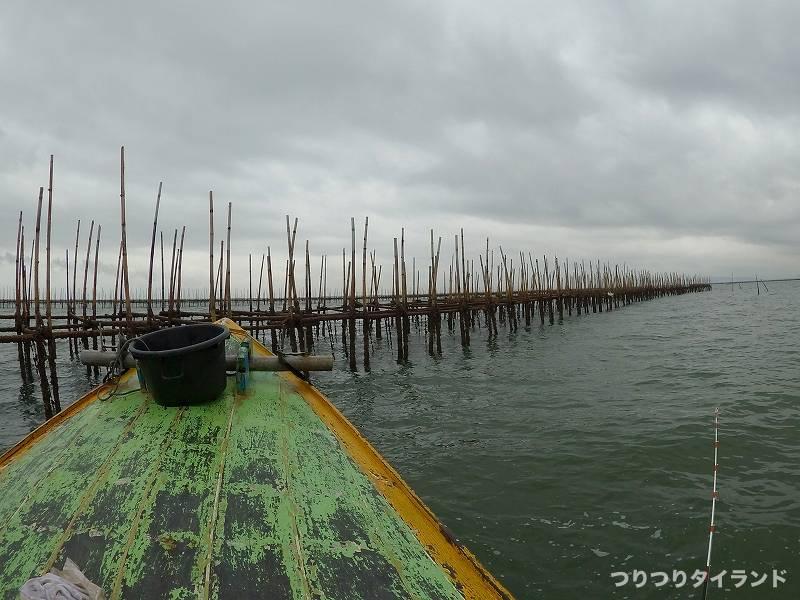 アンシラー沖 牡蠣イカダ