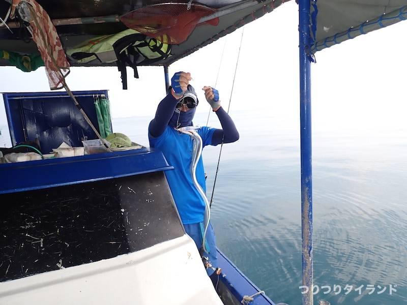 シーチャン島 タチウオ