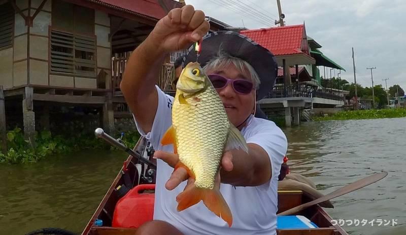 チャオプラヤ川 釣り ガヘー