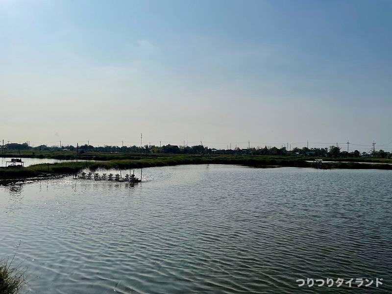 モンコン特別池