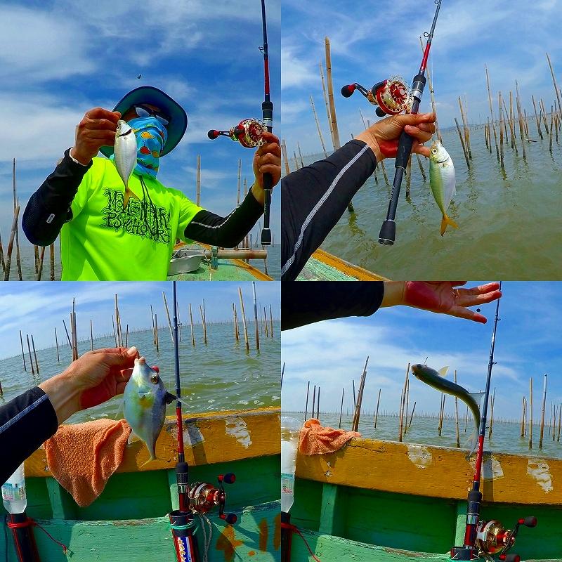 タイランド湾 釣果1