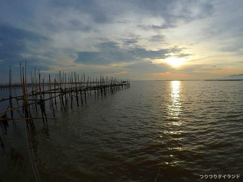 ミドリイガイ 釣り場