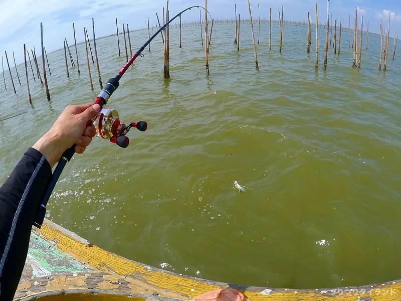 タイランド湾 チヌかかり釣り