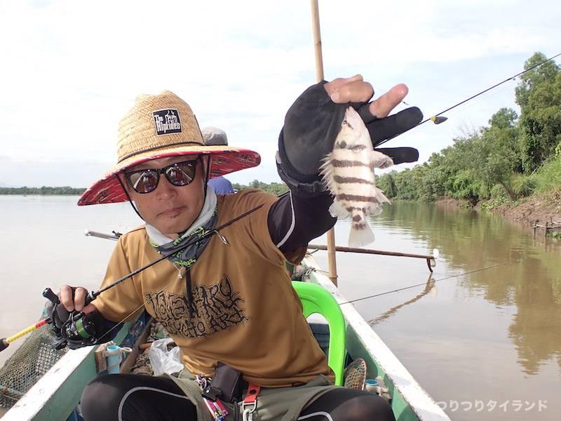 白ダトニオ 釣り