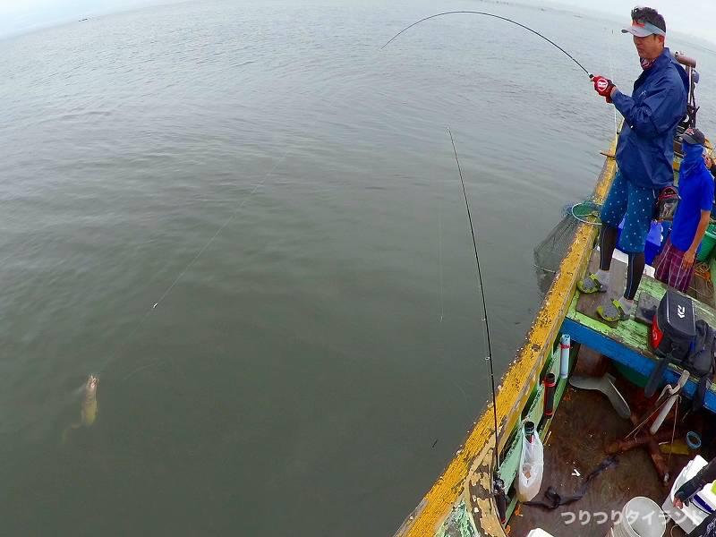 海ナマズ タイ 釣る